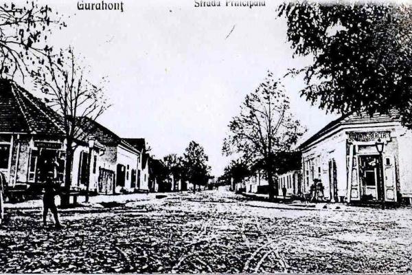 gurahont-str-principala-1925A088E7FE-AA78-D954-FC51-5784F8DC8A21.jpg